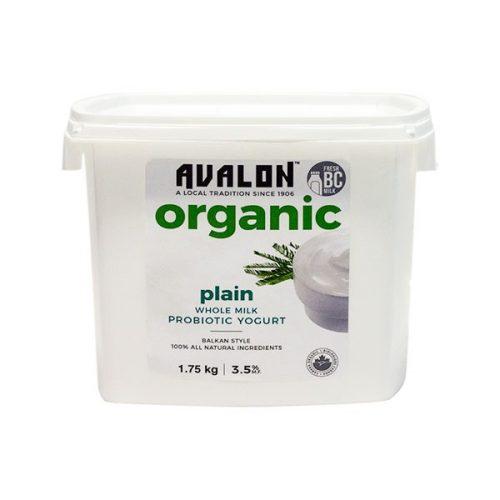 Avalon Organic Plain Yogurt (Family Size), 1750g – 6/cs