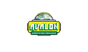 Avalon: Conventional